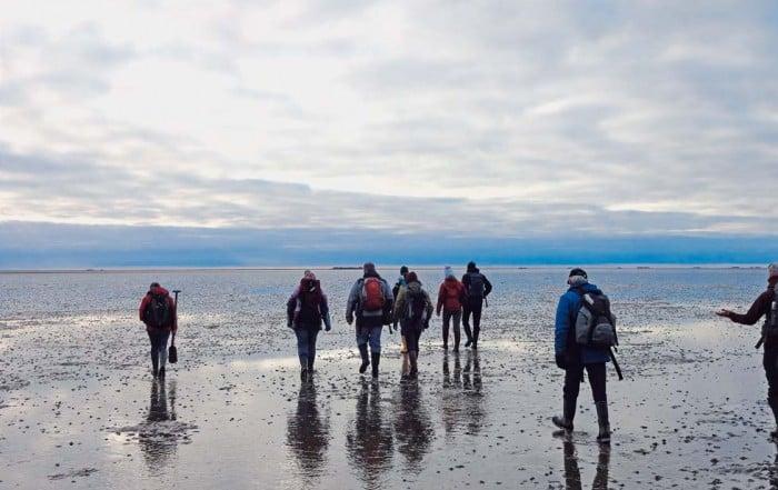 Dithmarscher Eismeer Wattwanderung