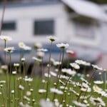 Nachhaltiges Camping
